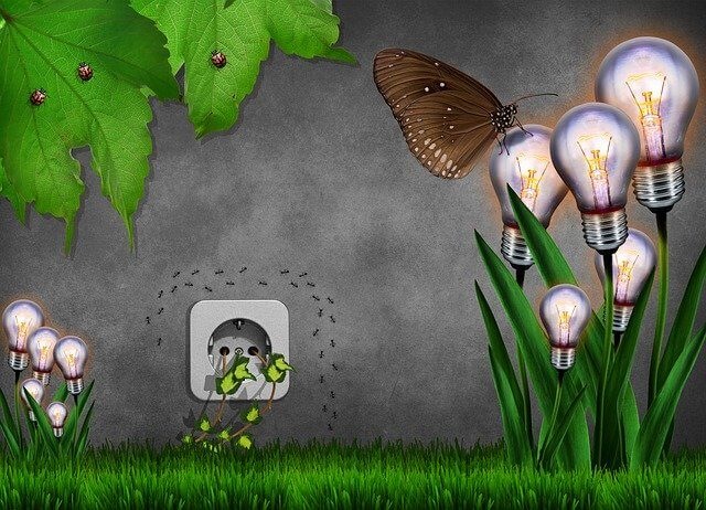 Ökostrom – Leider alles andere als saubere Energie