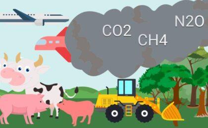 Klimawandel Ursachen