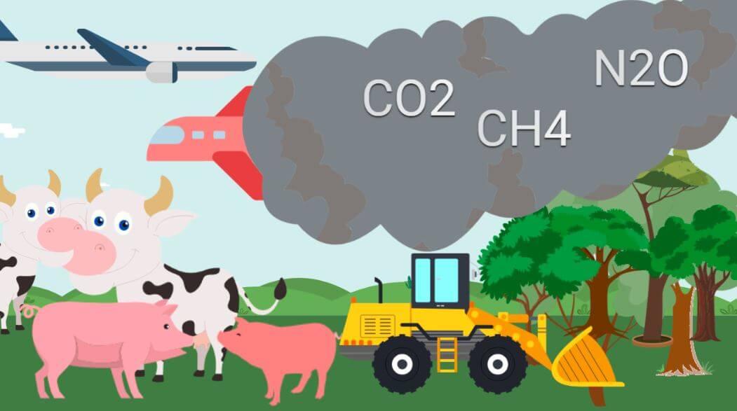 Klimawandel Ursachen – Nutztierhaltung ist der Hauptgrund